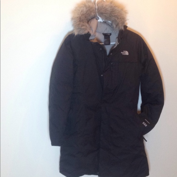artic parka north face